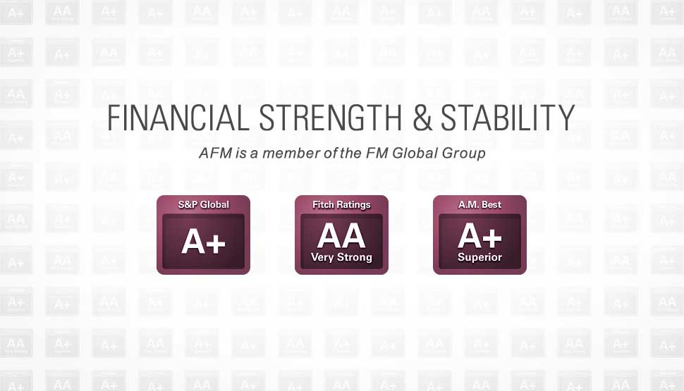 AFM financial strength and stability